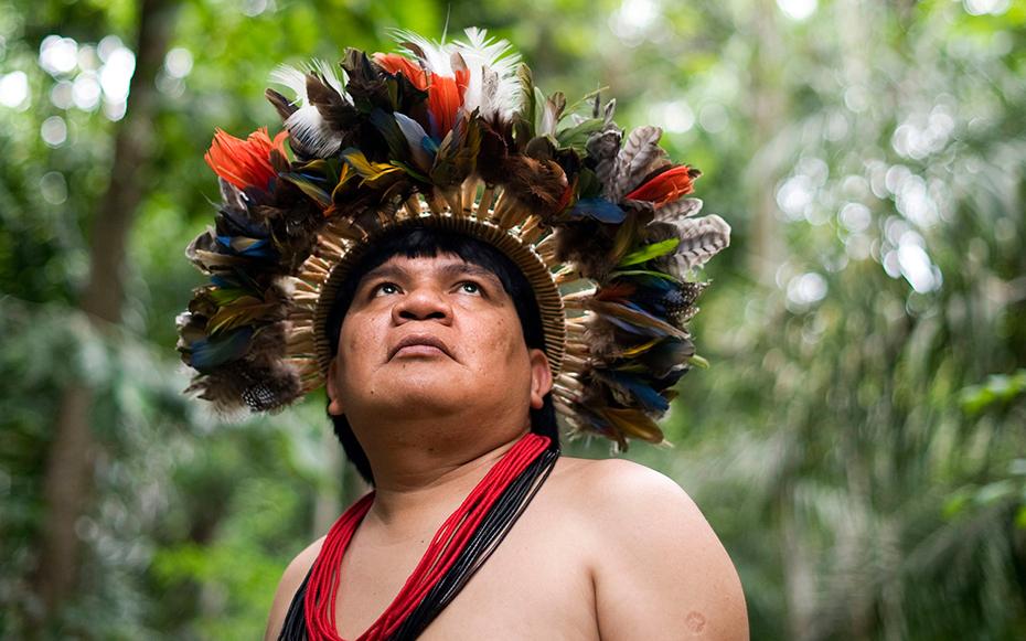 Amazonian Cosmos